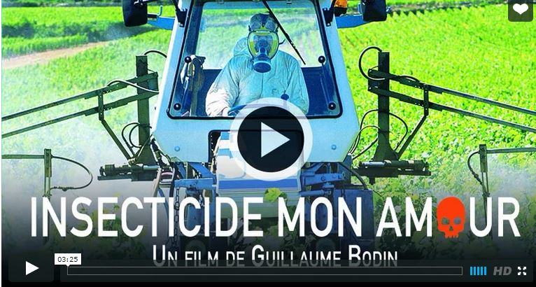 insecticide_mon_amoiur